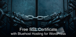 Bluehost Review 2020 security